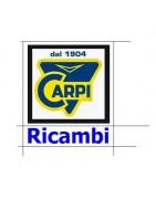 Ricambi Carpi