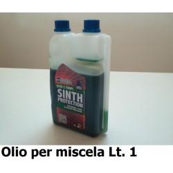 GNF-SINT2TF-LT1