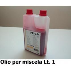 GNF-SINTSTIGA2T-LT1