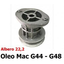 GNF-66030256