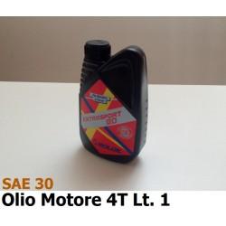 GNF-SAE301
