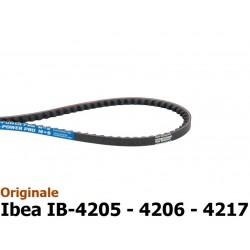 GNF-P3010013