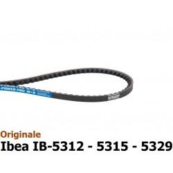 GNF-P3010012