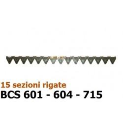 GNF-590435440
