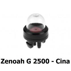 GNF-CQ2300330